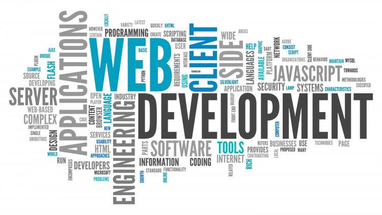 Servicii de web development pentru MEGA