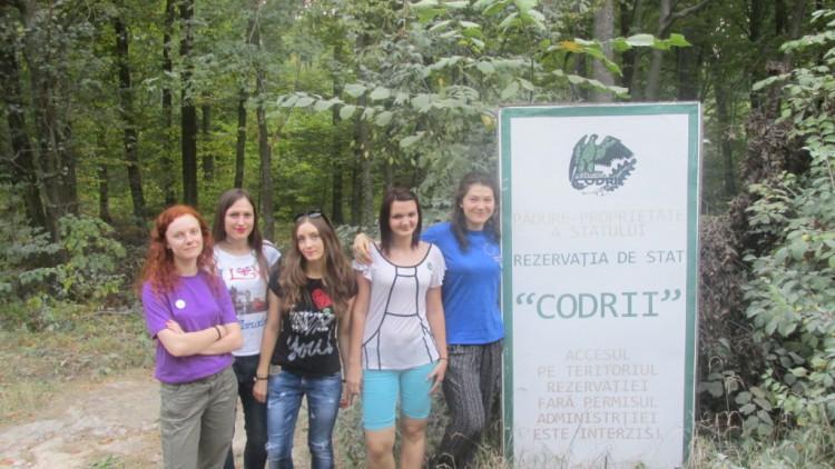 Participă la Prima Cercetare despre Serviciile Ecosistemelor din Pădurile Moldovei